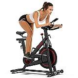 Dripex Heimtrainer Fahrrad, 13 kg Schwungrad Ergometer Hometrainer mit Magnetwiderstandseinstellung,...