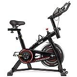 Hadwin Heimtrainer Fahrrad Indoor, Fitness Fahrrad bis 120kg mit 10 kg Schwungrad LCD-Anzeige,...
